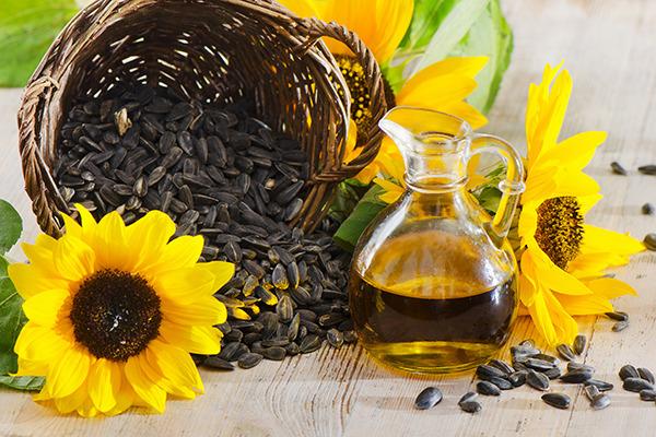 Бізнес ідея: Переробка насіння соняшника