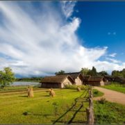 Який бізнес можна відкрити в сільській місцевості?