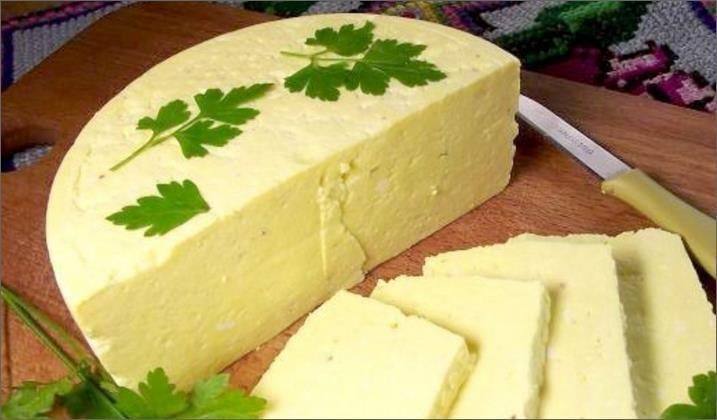 Технологія і виробництво сиру в домашніх умовах