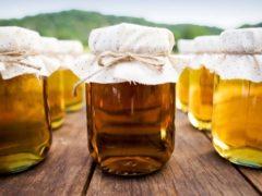 Бджільництво як бізнес
