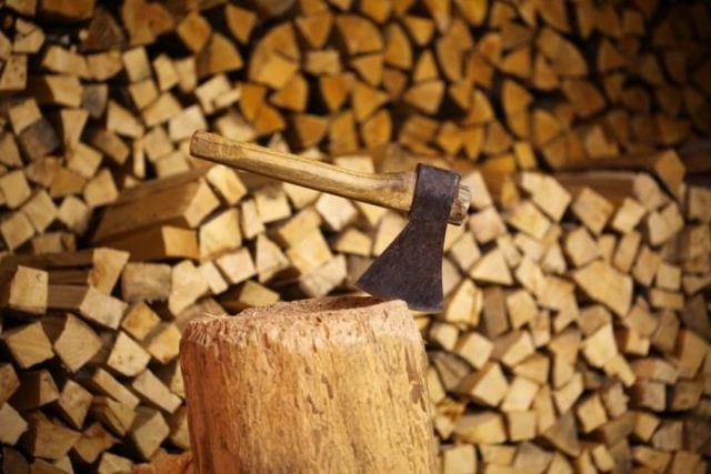 Де брати деревину для продажу дров?